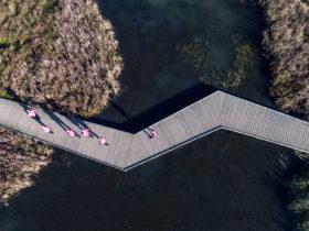 Klimatilpasning Kokkedal vinder DANVA og Realdanias Klimapris 2017