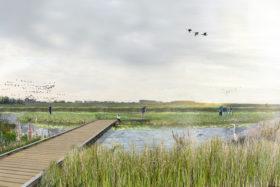 Schønherr vinder natur- og kulturformidling af Tøndermarsken