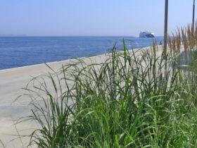 Grønne områder tilfører sjæl til Lighthouse