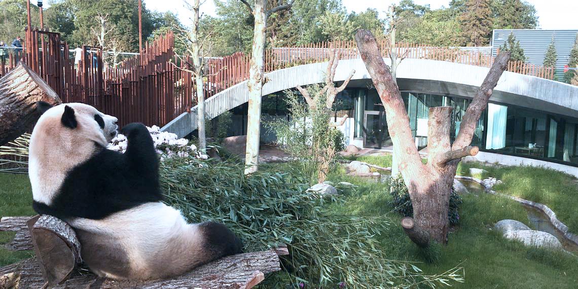 Pandaanlægget