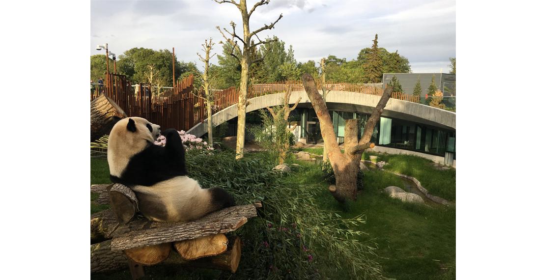 Pandaanlægget København Zoologisk have