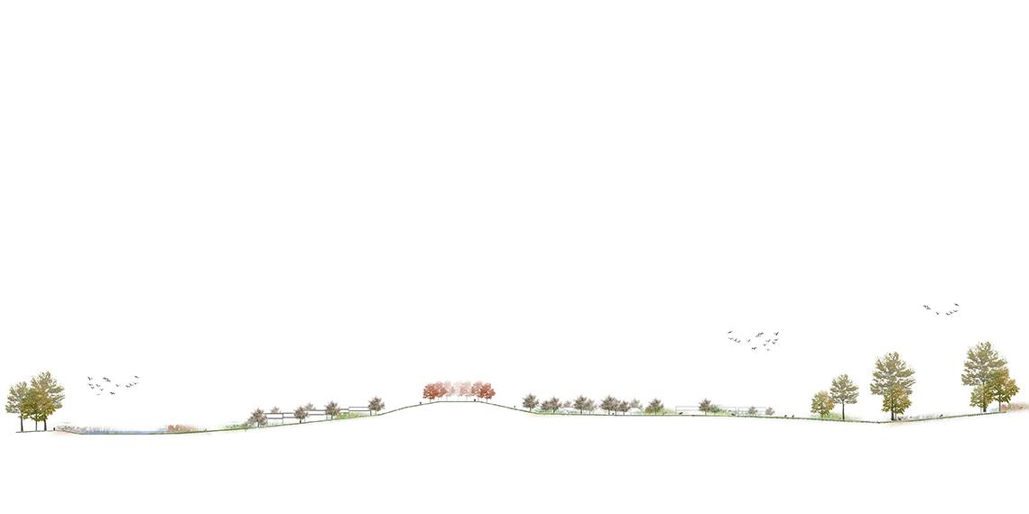Snit-Æblelunden-uden-tekst_web